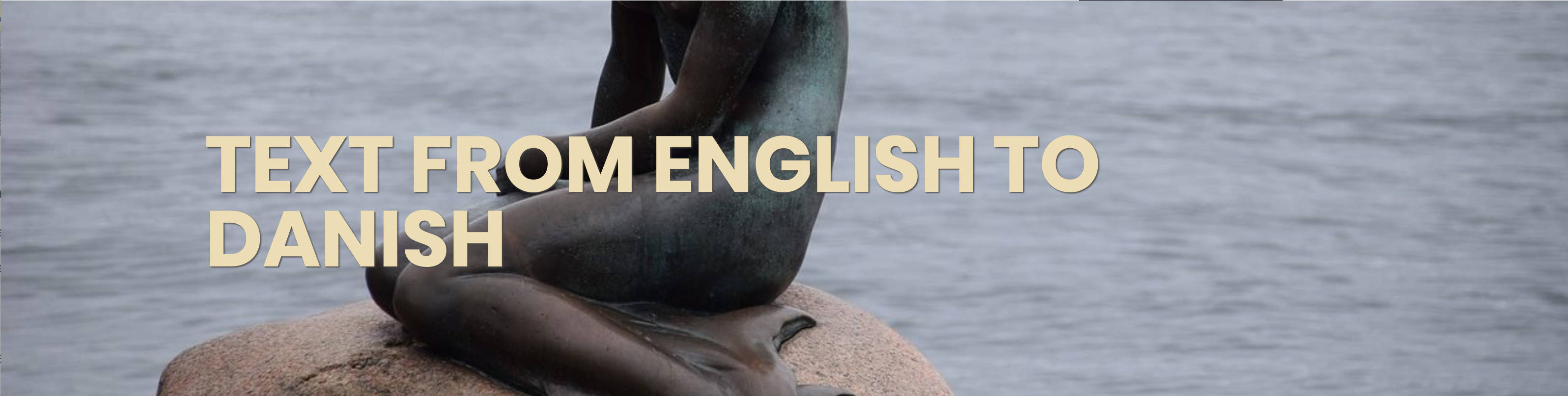 Translation from English to Danish